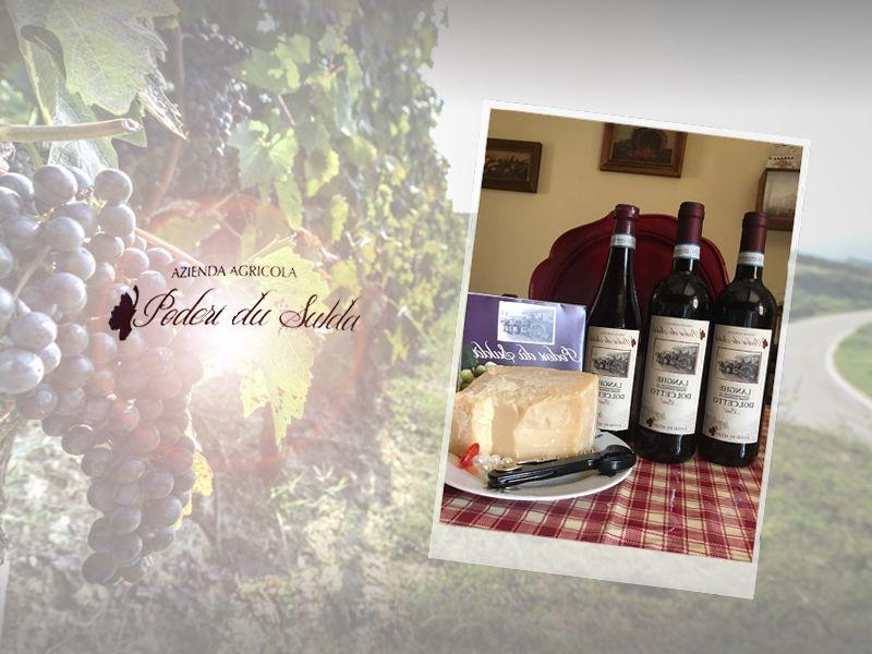 Offerta distribuzione vino dolcetto artigianale - Promozione vendita vino dolcetto vellutato