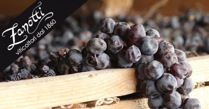 Exploitation agricole Zanotti Diego - Promotion vente de vins prisés Valpolicella Recioto Amarone