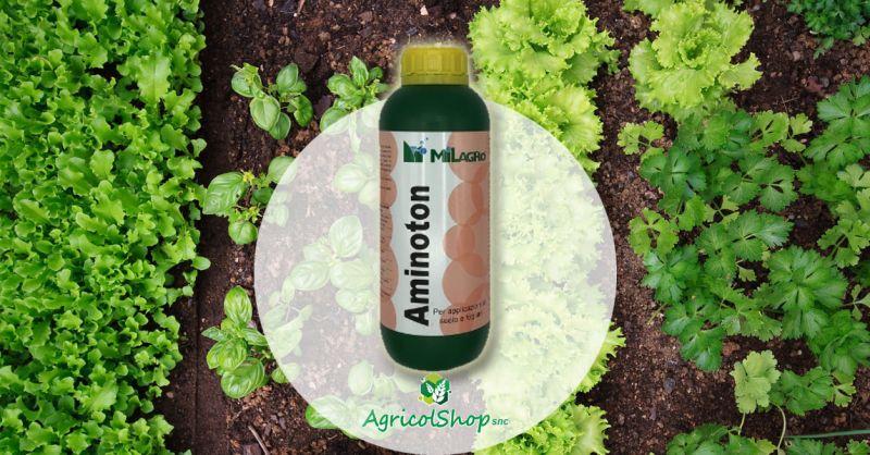 AGRICOLSHOP - OFFERTA VENDITA ONLINE CONCIME NATURALE AZOTATO FLUIDO AMINOTON MILAGRO
